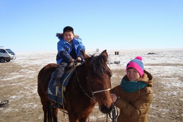 te paard (5)